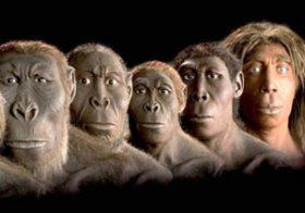 İnsan evrimi felsefesi